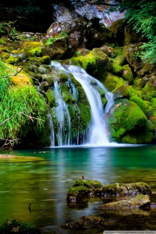 0 6001 3d hd nature wallpapers for mobile 3d nature