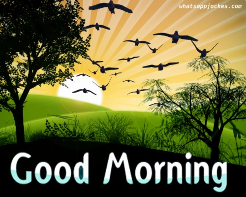 Motivational Quotes Good Morning In Hindi With Gud Gud Mrng