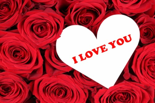 List Of Free Valentines Day Wallpapers Download Page 8