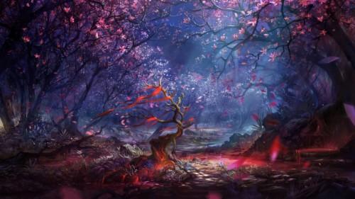 Fantasy Forest Wallpaper Fantasy Forest Wallpaper 4k