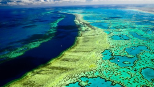 Coral Reef Wallpaper Hd Great Barrier Reef From The Air