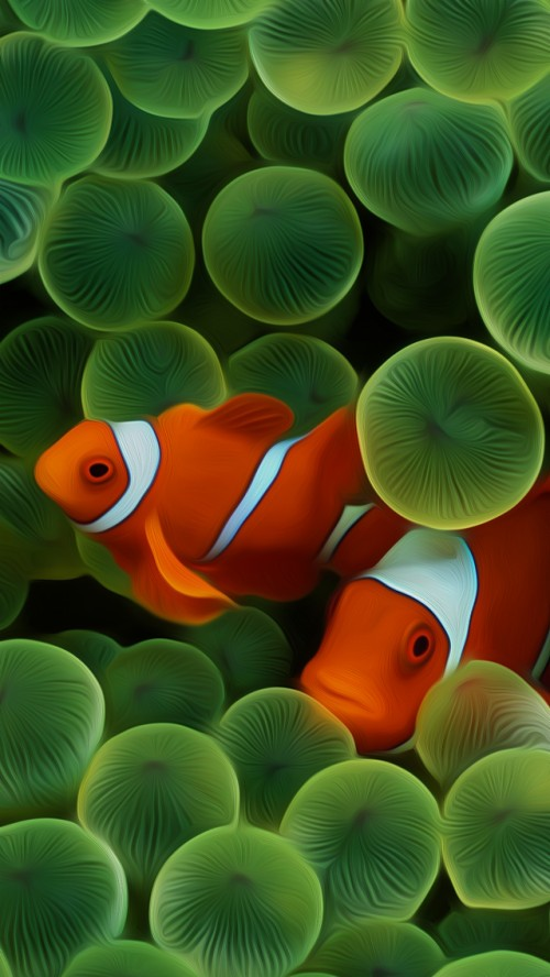 Nemo Cute Old Iphone Wallpapers Fish Wallpaper Iphone