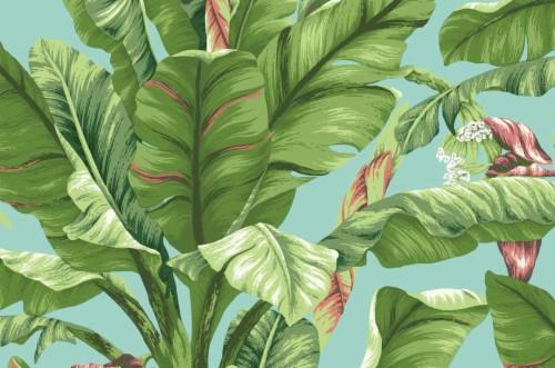 Banana Leaf Wallpaper Desktop Backgrounds Tropical Leaf 116650 Hd Wallpaper Backgrounds Download Checkout high quality nature wallpapers for android, pc & mac, laptop, smartphones, desktop and tablets with different resolutions. desktop backgrounds tropical leaf
