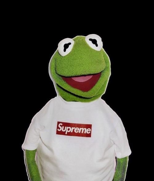Kermit Fun 1158138 Hd Wallpaper Backgrounds Download