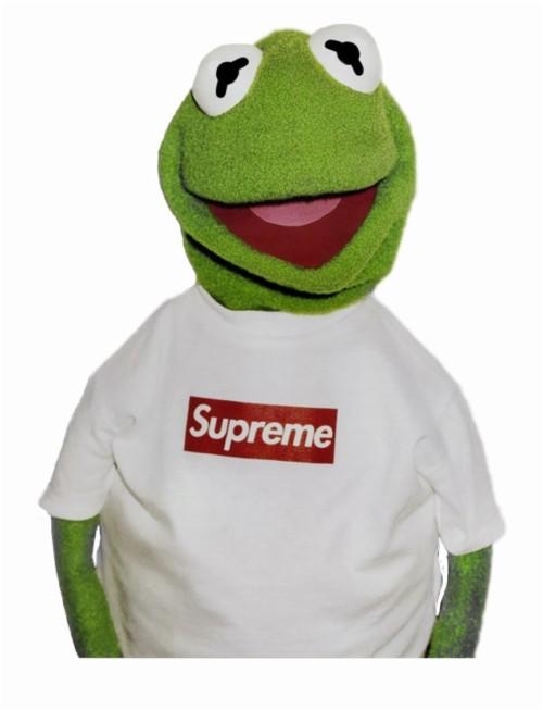 Kermit The Frog Supreme Wallpaper Kermit The Frog Hd