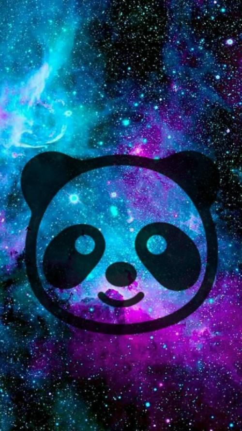List Of Free Panda Wallpapers Download Itl Cat