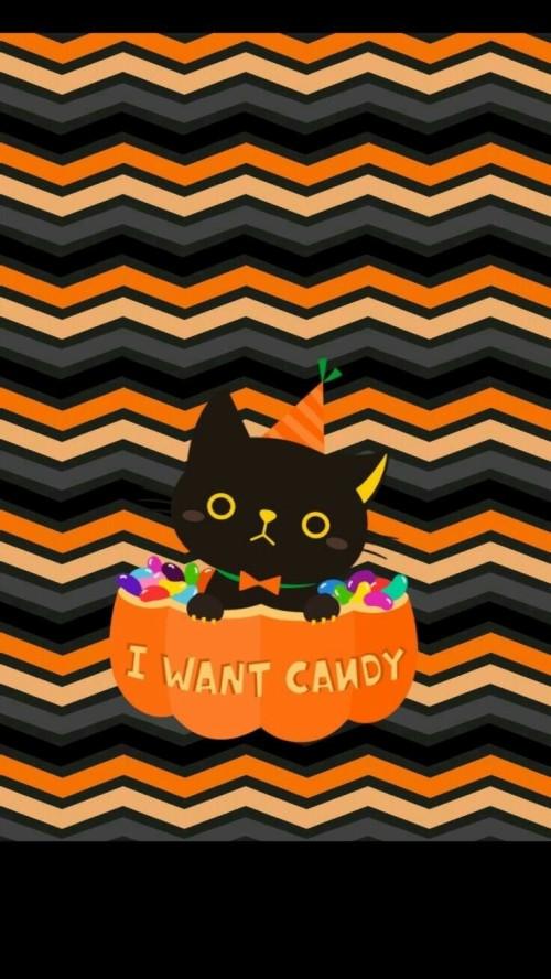 Iphone Halloween Wallpaper Cute Black Cat Cute Halloween Backgrounds Iphone 129243 Hd Wallpaper Backgrounds Download