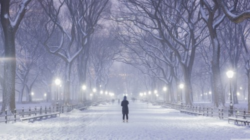 Standard New York Winter 4k 137910 Hd Wallpaper