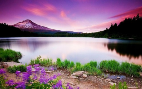 Wallpapers For Gt Beautiful Scenery Mobile Beautiful