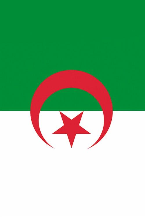 Algeria Dz वलपपर Called Alger Algeria 1331785