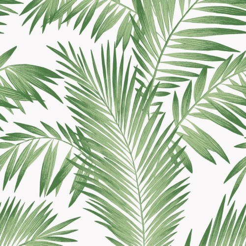 Tropical Palm Green Wallpaper Palm Leaves Aesthetic Background 140948 Hd Wallpaper Backgrounds Download Please contact us if you want to publish a tropical aesthetic. tropical palm green wallpaper palm