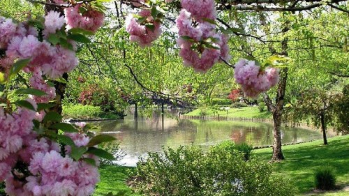 List Of Free Spring Wallpapers Download Itlcat