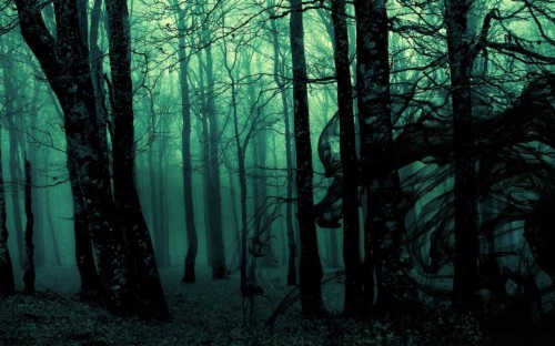 23 Forest Hd Wallpapers Dark Forest Tumblr Background