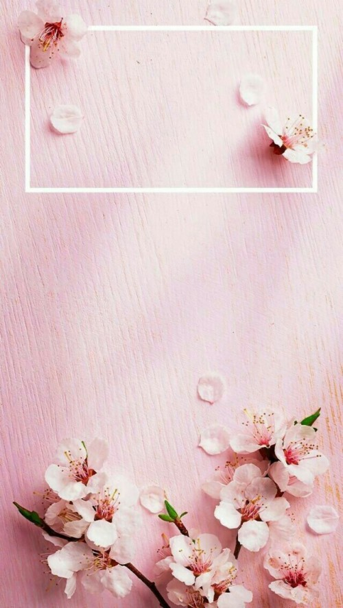 158 1586886 pin by suman rajput on wallpaper rose gold
