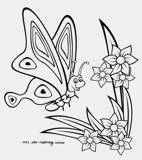 Hasil Gambar Untuk Wallpaper Panorama Bunga Dan Kupu Kupu