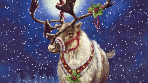 Reindeer With Mistletoe Christmas Reindeer 1725844 Hd