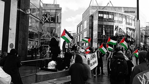 Filename Palestine Hd 196230 Hd Wallpaper