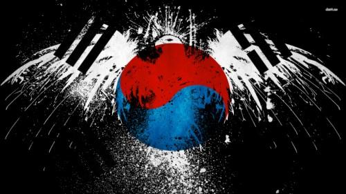 Flag Of South Korea Wallpaper South Korean Flag Art