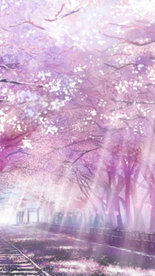 Building Cherry Blossoms Isou Nagi Nobody Original Anime Wallpaper Iphone Cherry Blossom 1918109 Hd Wallpaper Backgrounds Download