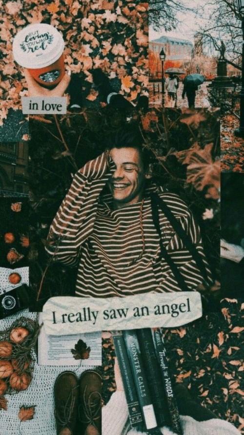 Harry Styles Aesthetic Wallpaper Harry Styles Wallpaper