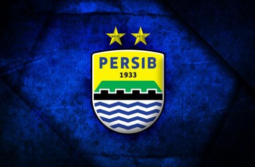 Logo Png Persib Viking 461513 Hd Wallpaper Backgrounds Download