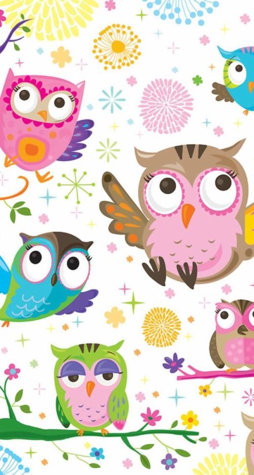 Gambar Wallpaper Owl Lucu Kampung Wallpaper 2040861 Hd