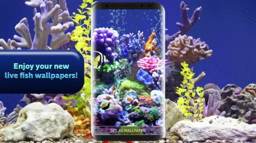3d Aquarium Live Wallpaper Official Video Coral Reef