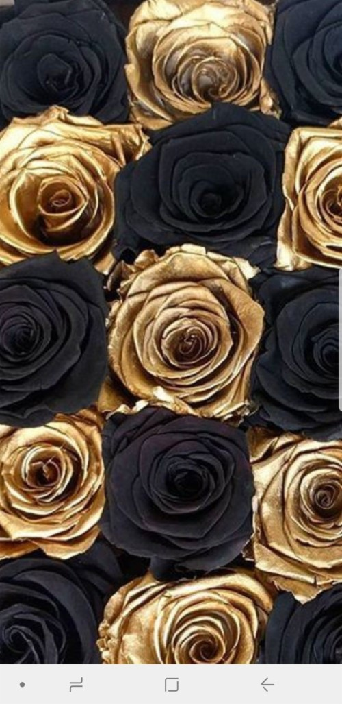 List Of Free Rose Gold Wallpapers Download Itl Cat