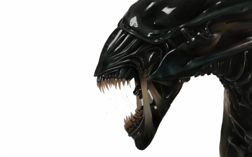Xenomorph Wallpaper Alien Queen 217280 Hd Wallpaper