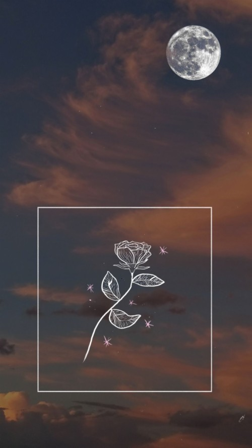 230 2304075 aesthetic wallpaper for android