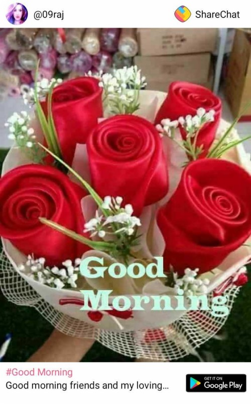 Good Morning Good Morning Share Chat 2451558 Hd Wallpaper Backgrounds Download