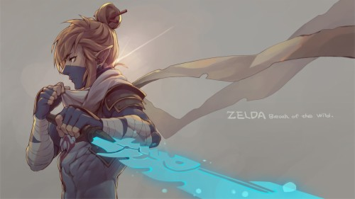 The Legend Of Zelda Breath Of The Wild Wallpaper Anime
