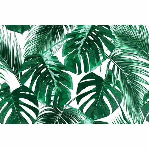 Agnon Removable Tropical Palm Leaves High Resolution Tropical Leaves 3137922 Hd Wallpaper Backgrounds Download For the tropical evergreen coniferous forests, see some trees in these forests drop some or all of their leaves during the winter dry season. agnon removable tropical palm leaves