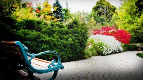 Download Wallpaper Garden Spring Landscape Full Hd 1080p Garden Images Hd 303848 Hd Wallpaper Backgrounds Download