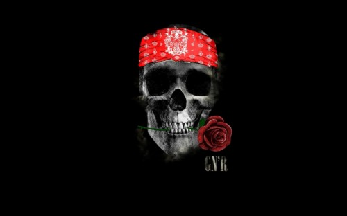 List Of Free Guns And Roses Wallpapers Download Itlcat