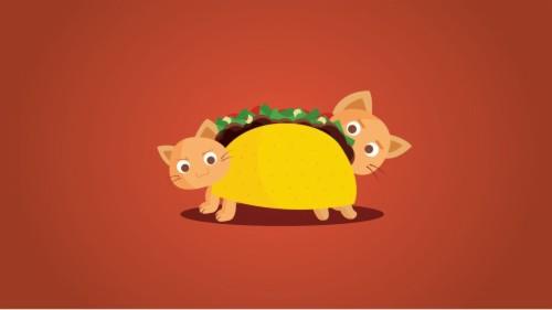Cute Taco Wallpaper Taco 463315 Hd Wallpaper Backgrounds Download