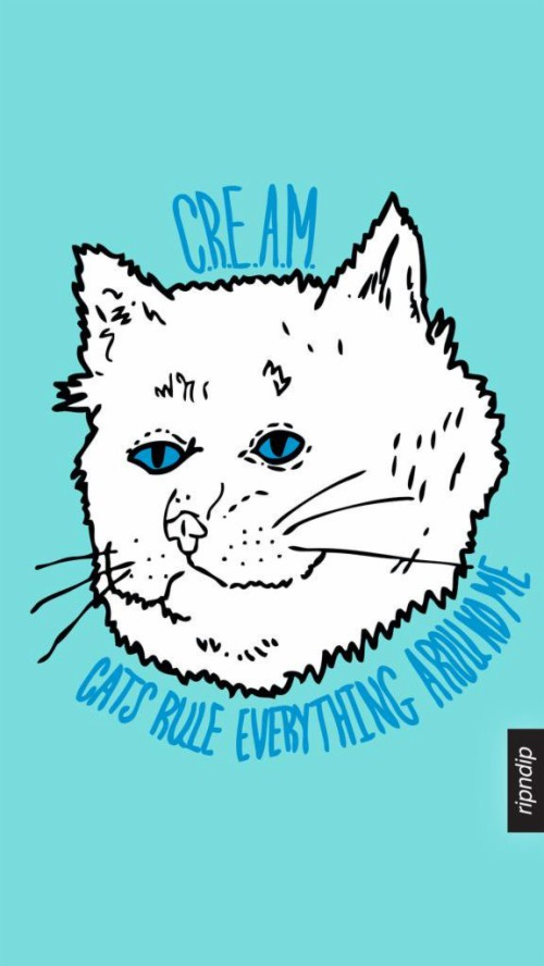 List Of Free Ripndip Wallpapers Download Itlcat