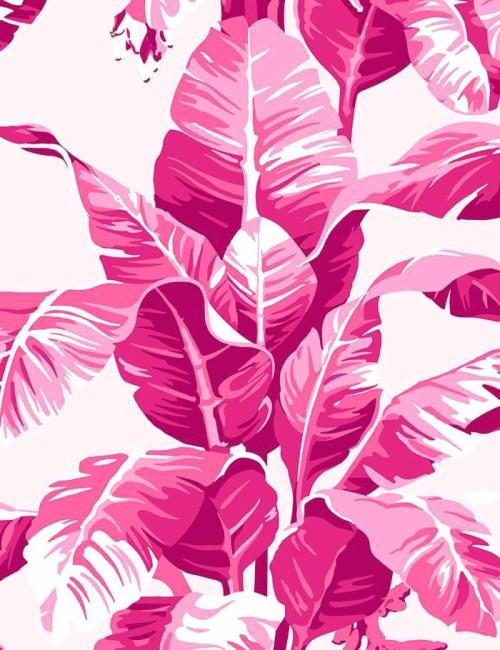 48 481025 wallpaper pink pink wallpaper tumblr desktop pink leaves