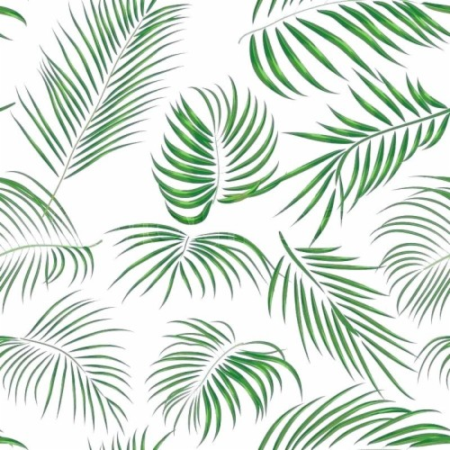 List Of Free Tropical Leaves Wallpapers Download Itl Cat Download transparent tropical leaf png for free on pngkey.com. list of free tropical leaves wallpapers