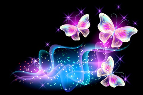 Colorful Butterfly 2307092 Hd Wallpaper Backgrounds