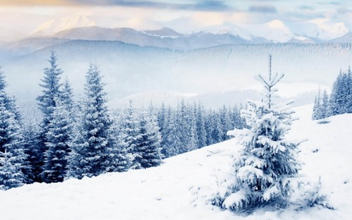 Free Winter Wallpapers Hd Winter Desktop Wallpaper 4k