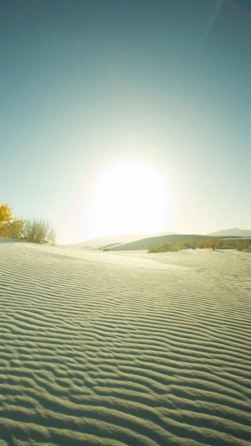 Desert Drought Cactus Rhombus Cover Art Iphone 6 Wallpaper