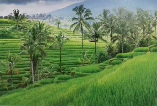 Wallpaper Pemandangan Alam Dan Pedesaan Pemandangan Alam