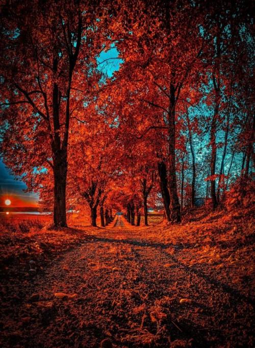 Picsart Cb Edit Background Png Picsart Cb Edit Background Hd 719711 Hd Wallpaper Backgrounds Download