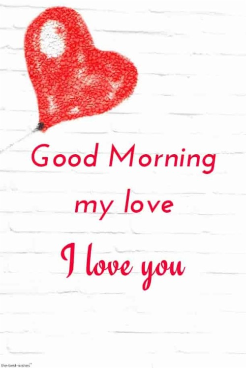 Good Morning I Love You Janu Image The Best Hd Wallpaper Love You Janu Shayari Good Morning 1751651 Hd Wallpaper Backgrounds Download