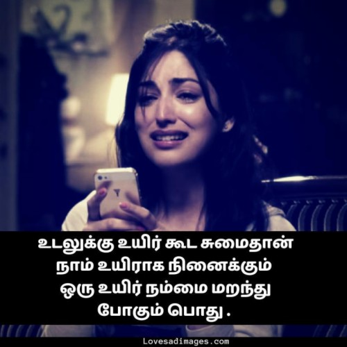Love Feel Thoughts In Tamil 2231053 Hd Wallpaper
