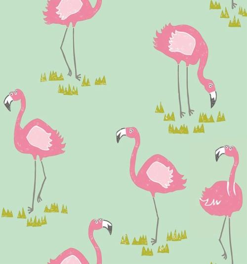 Beautiful Birds Decorating Children Wallpapers Cartoon Burung