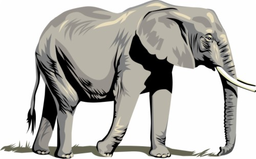 Elephant Clipart Png For Web Transparent Background Elephant Clipart 801412 Hd Wallpaper Backgrounds Download Download and use them in your website transparent background elephant png. transparent background elephant clipart