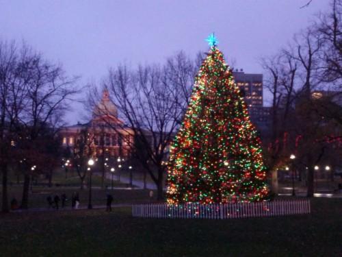 88 882873 christmas backgrounds tumblr christmas tree photography christmas background