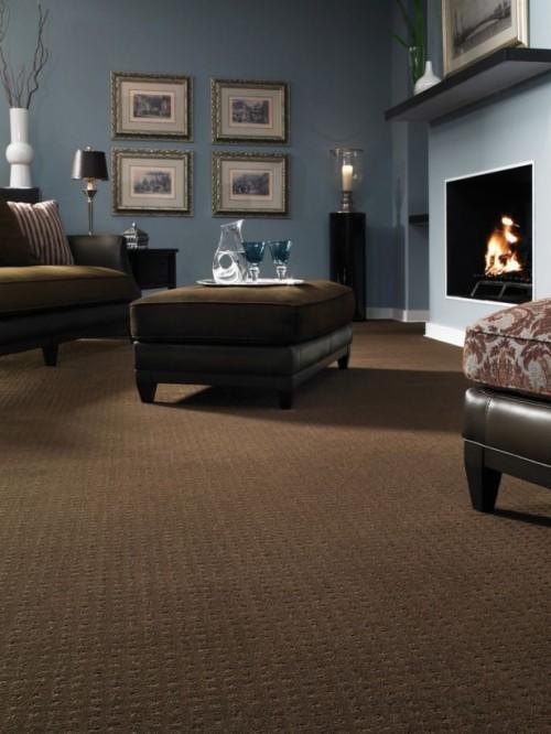 Brown Carpet Bedroom - Best Carpet Colour For Living Room ...